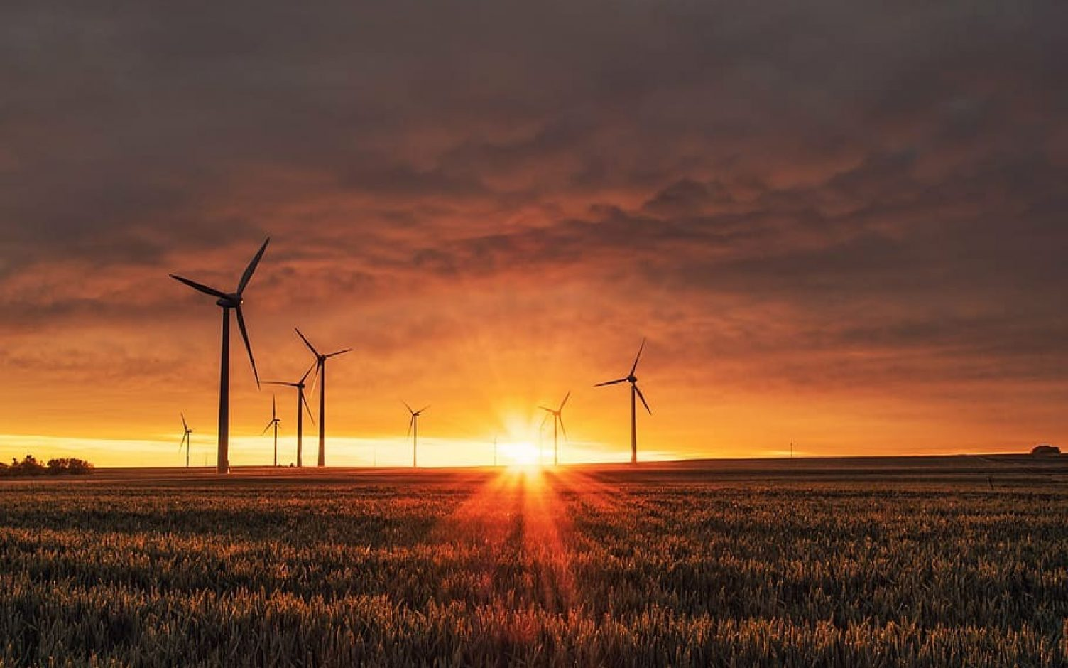 Onshore wind farms will now be able to bid in the CfD auctions.