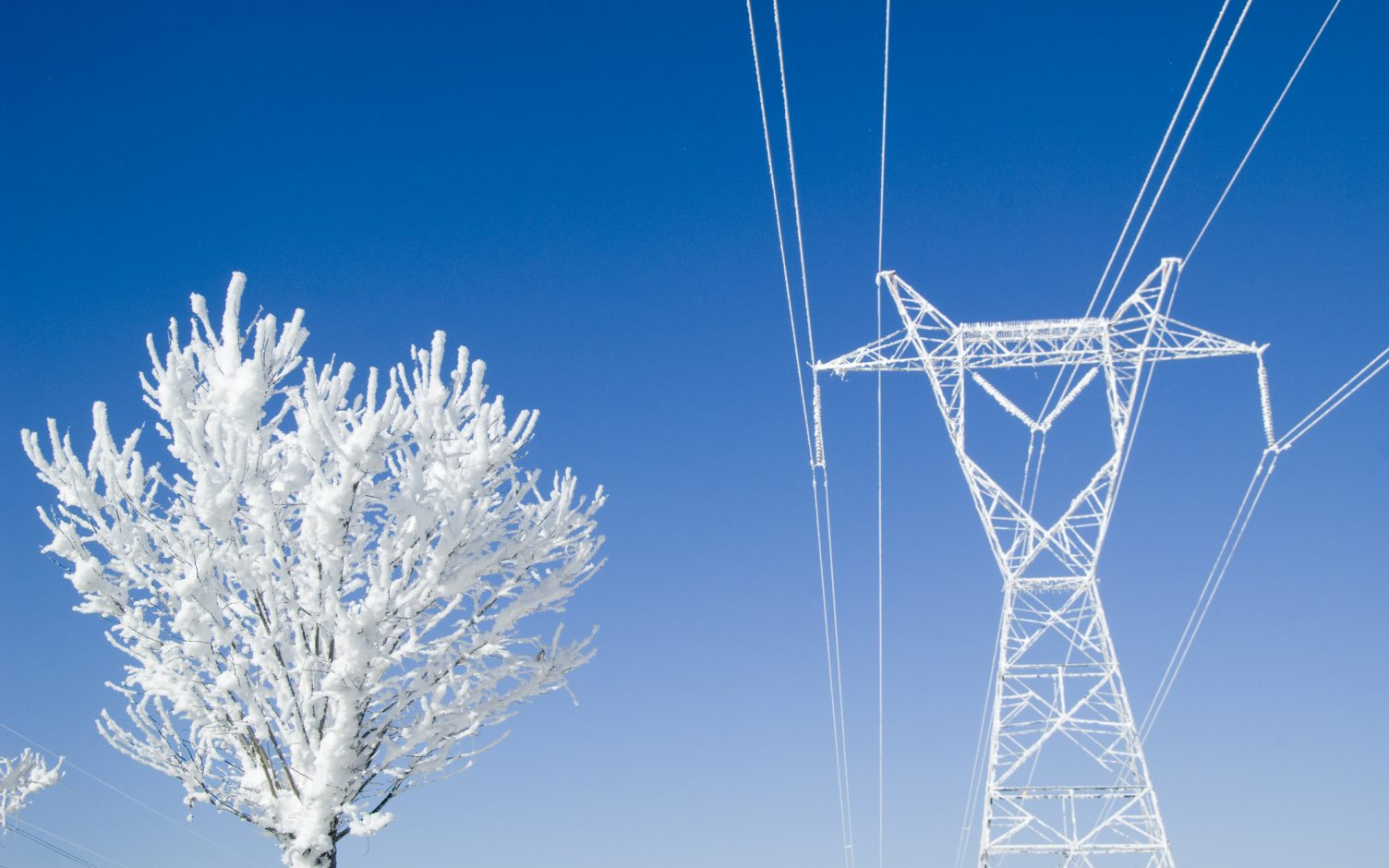 This winter has seen high prices across a number of markets, including Dynamic Containment. Image: Getty