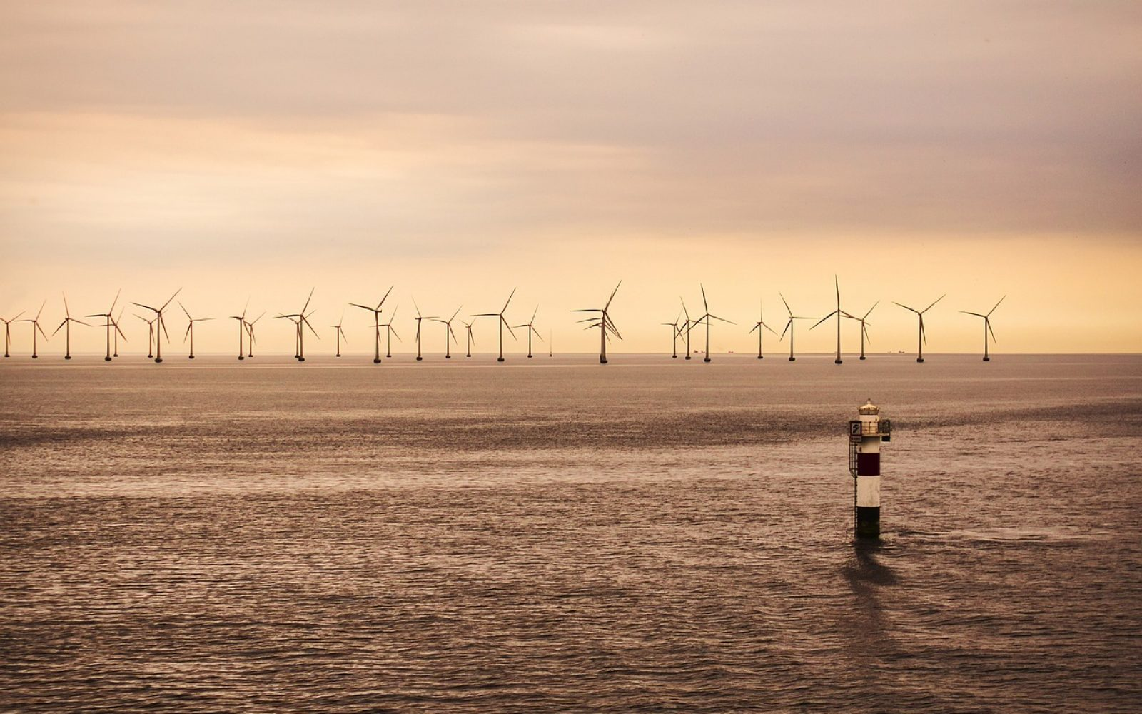 The Offshore Wind Sector Deal was launched in March 2019 to help grow the sector.