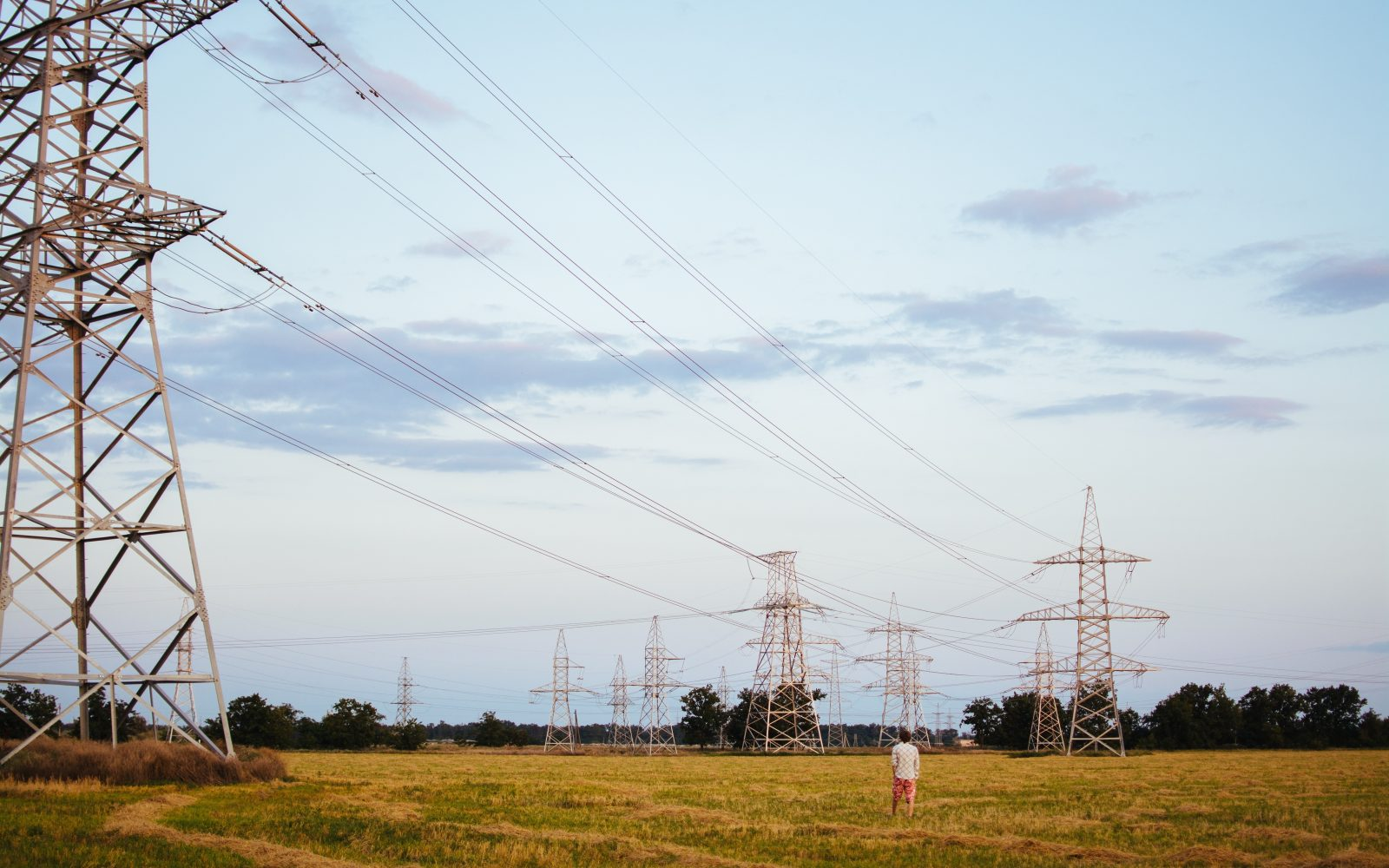 """The energy white paper is set to be a foundational document for our sector."""
