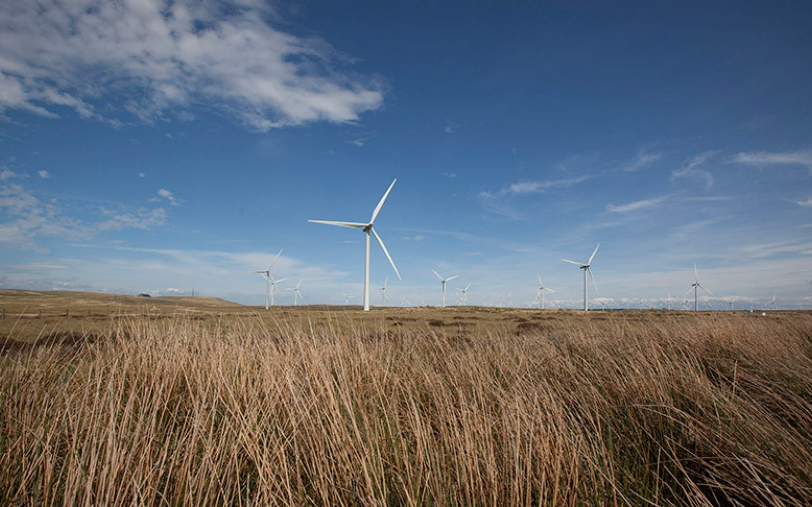 The Whitelee windfarm will help power the electrolyser alongside solar and storage. Image: ScottishPower.