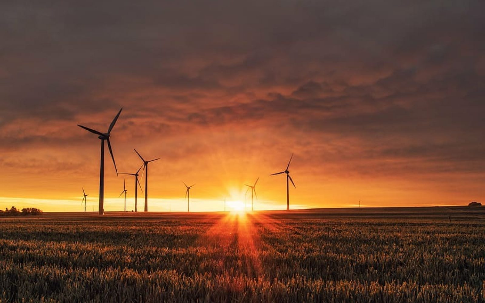In 2019, just 629MW of onshore wind came online.
