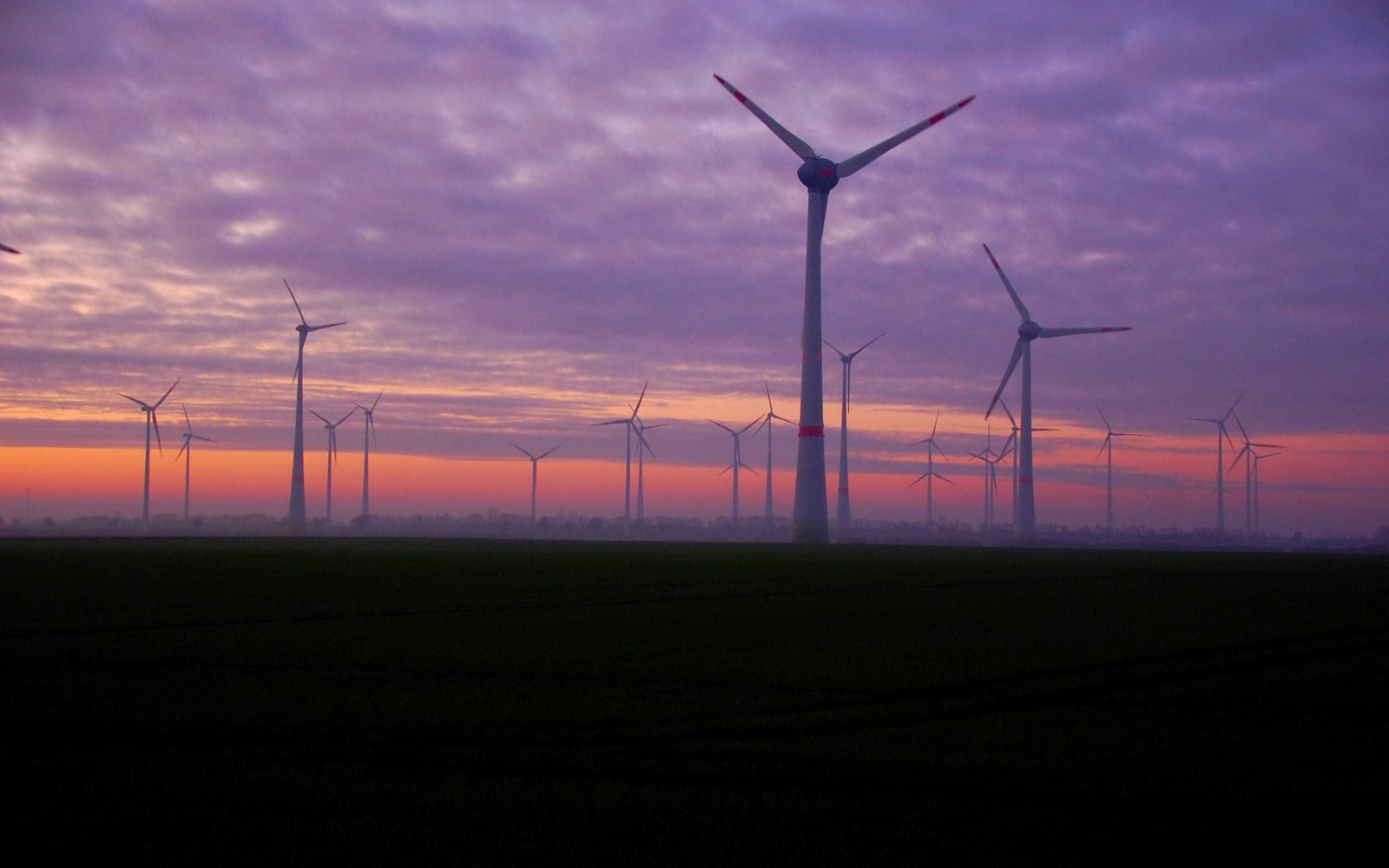 On Saturday 22 August, at 1am wind made up 59.1% of Britain's 13.5GW mix.